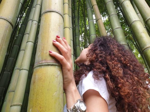 Blogger e bambù a Ninfa