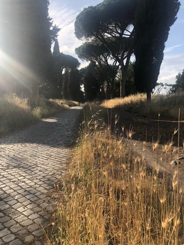 Vegetazione Appia Antica